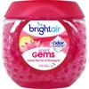 Picture of Bright Air Scent Gems Odor Eliminator
